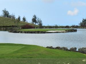 Island Green, # 17