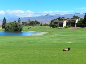 Waikoloa Village GC